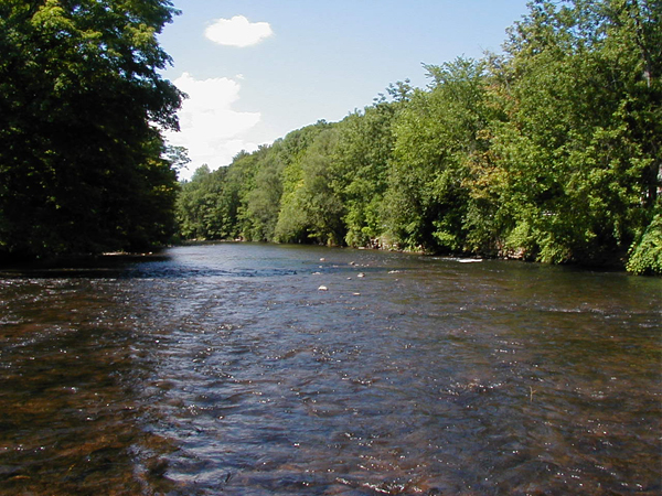 East Branch Delaware River
